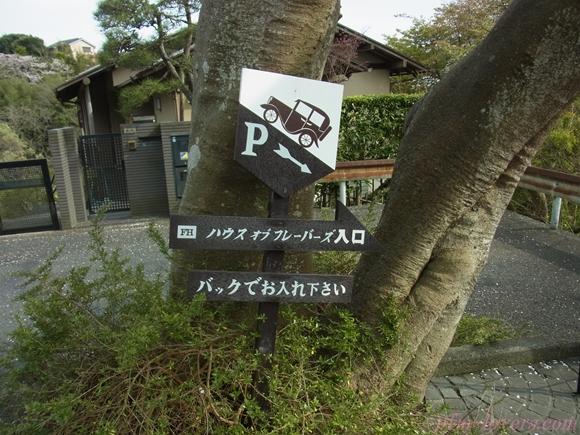 鎌倉チーズケーキ3