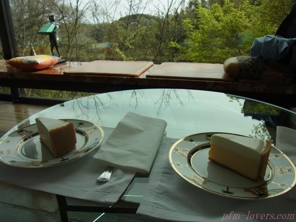 鎌倉チーズケーキ18