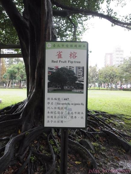 台湾ツアー7